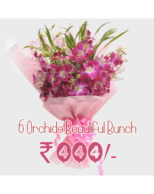 6 Beautiful orchids in Bunch