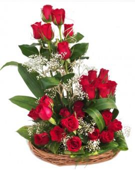 ROMANTIC WHISPER - 25 Roses