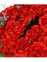 20 CARNATIONS BUNCH