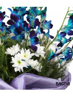 10 BLUE ORCHIDS BUNCH